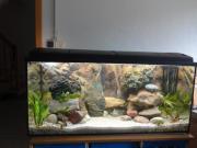 180 L Aquarium