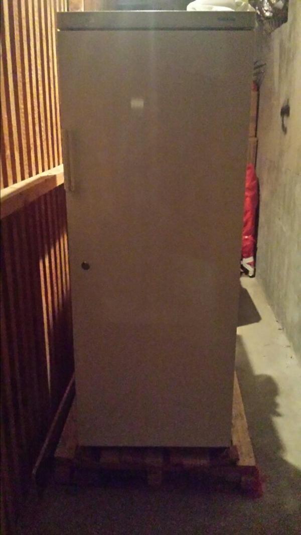 k hlschrank gefrierschrank kleinanzeigen gefrierger te k hlschr nke. Black Bedroom Furniture Sets. Home Design Ideas