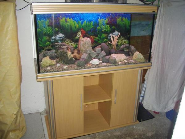 Aquarium alu neu und gebraucht kaufen bei for Aquarium gebraucht