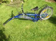 Adams Fahrradtrailer mit