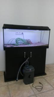 Aquarium 160ltr. mit