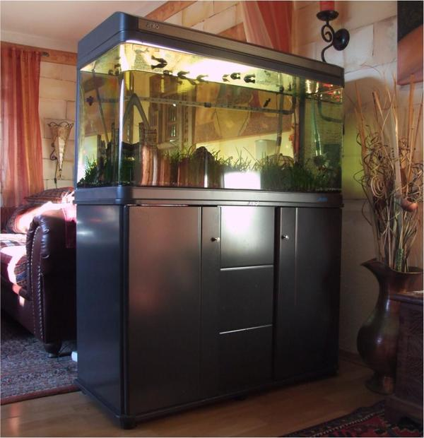 aquarium 240 l mit unterschrank au enfilter und fischen. Black Bedroom Furniture Sets. Home Design Ideas