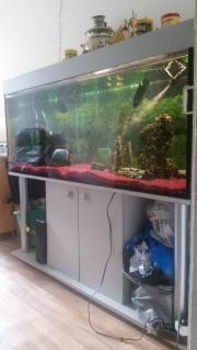 Aquarium 450 Liter