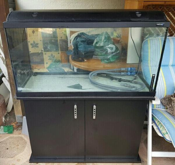aquarium in ludwigsburg fische aquaristik kaufen und verkaufen ber private kleinanzeigen. Black Bedroom Furniture Sets. Home Design Ideas