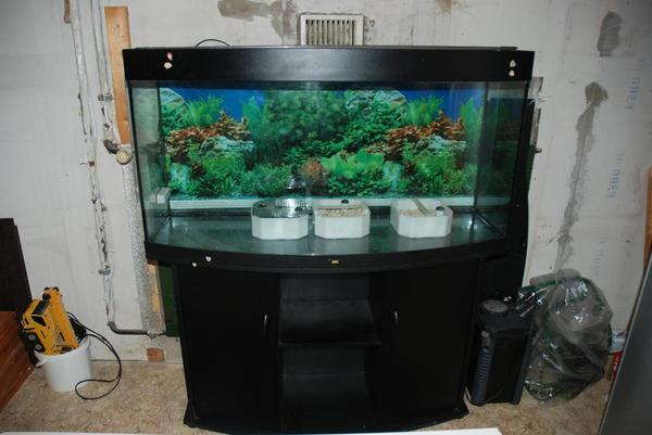 aquarium juwel 260 liter unterschrank in m nchen fische aquaristik kaufen und verkaufen. Black Bedroom Furniture Sets. Home Design Ideas