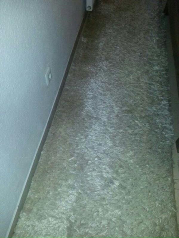 Teppiche (Möbel & Wohnen) Solingen gebraucht kaufen