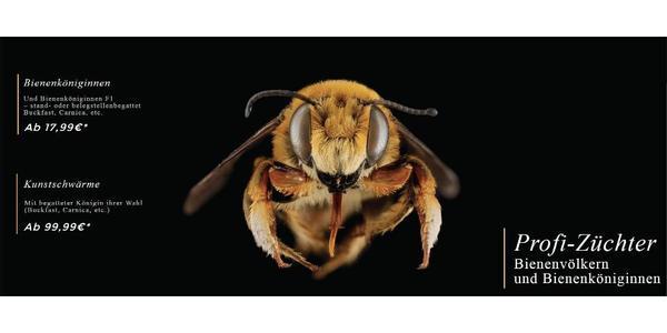 bienen kaufen buckfast carnica dunkle biene ligustica kaukasische biene in braunschweig. Black Bedroom Furniture Sets. Home Design Ideas