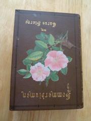 Blumenbuch von Carus