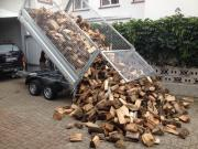 Brennholz ab 50