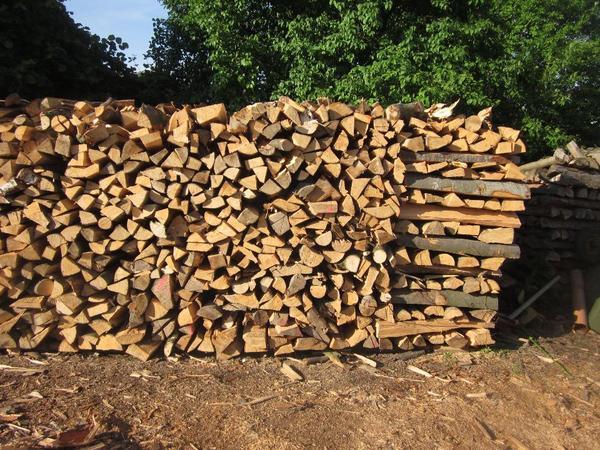 brennholz buche in gerhardshofen holz kaufen und verkaufen ber private kleinanzeigen. Black Bedroom Furniture Sets. Home Design Ideas