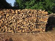 Brennholz Esche
