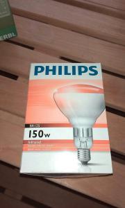 brutlampe