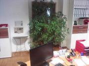 Büro oder Geschäftsräume