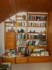 ca 500 Bücher