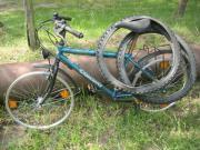 Conway Allterain Bike