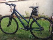 Damen-Mountainbike Dynamics