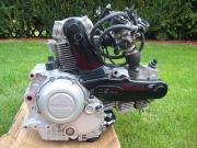 Ducati DS-1000