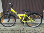 Fahrrad MTB Pegasus