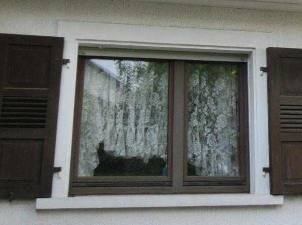 Fenster Meranti Doppelverglast In Bietigheim Fenster