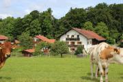 Ferienwohnung am Starnbergersee (