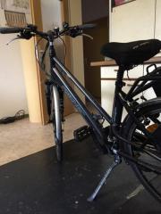 Fischer e-bike (