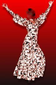 Flamencorock mit Oberteil