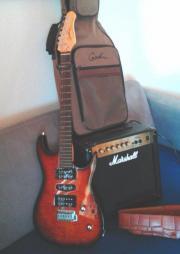 Godin E - Gitarre +