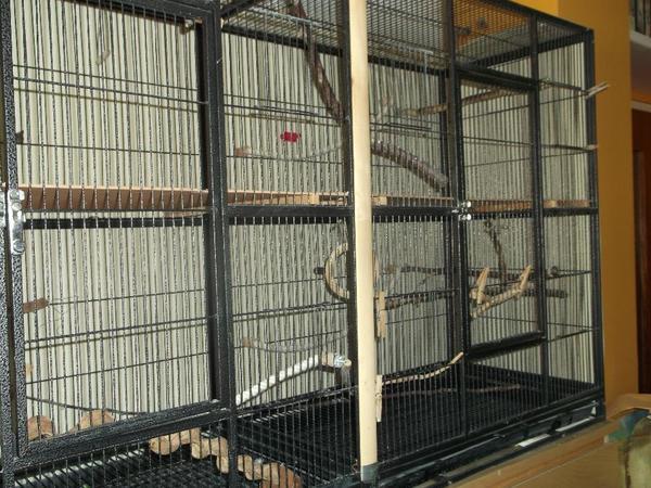 gro e voliere vogelk fig auf rollen zu verkaufen in puchheim zubeh r f r haustiere kaufen. Black Bedroom Furniture Sets. Home Design Ideas