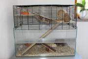 Hamster - oder Kleintier -