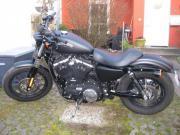 HD Iron XL883N