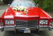 Hochzeitsauto !!!