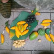 Holz Früchte, Milchflasche,