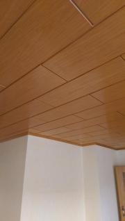 deckenpaneele handwerk hausbau kleinanzeigen kaufen und verkaufen. Black Bedroom Furniture Sets. Home Design Ideas