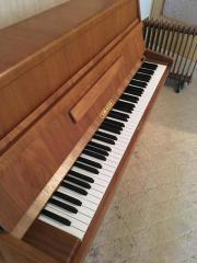 Ibach Klavier