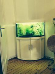 Juwel Eck-Aquarium