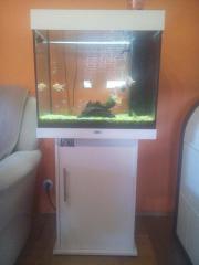 JUWELL Aquarium 120