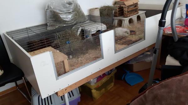 k fig gehege eigenbau f r meerschweinchen in. Black Bedroom Furniture Sets. Home Design Ideas