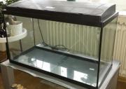 Komplettes Aquarium 110