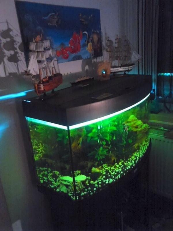 aquarium 180l neu und gebraucht kaufen bei. Black Bedroom Furniture Sets. Home Design Ideas