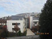 Leonberg, 1-Zi-