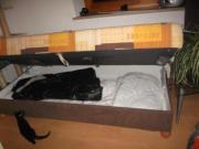 sofa mit bettkasten couch bett sehr g nstig abzuholen. Black Bedroom Furniture Sets. Home Design Ideas