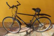 Lotus Herren Fahrrad
