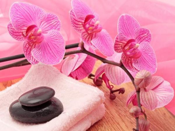 massage zum entspannen lomi lomi hot stone wellness in berlin kosmetik und sch nheit. Black Bedroom Furniture Sets. Home Design Ideas