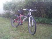 Mountainbike Winora 26