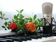 Musikunterricht: Gesang, Klavier,