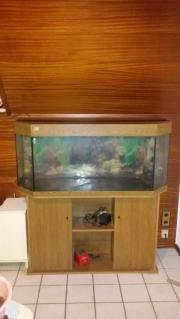 Nachlass Verkauf ! Aquarium