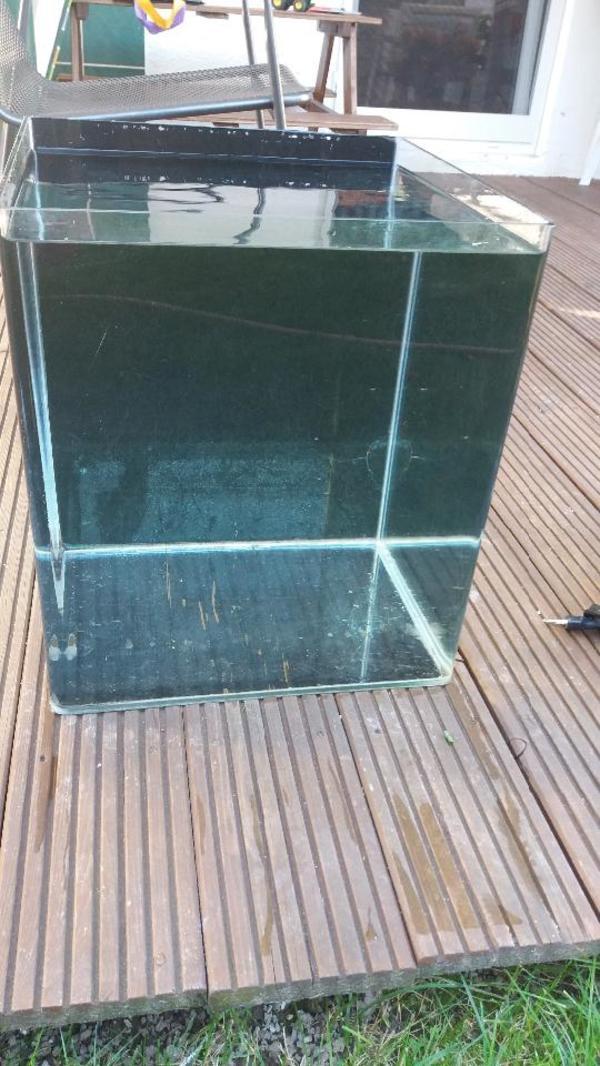 nano cube dennerle 60l mit lufthebefilter heizung zubeh r in rammingen fische aquaristik. Black Bedroom Furniture Sets. Home Design Ideas