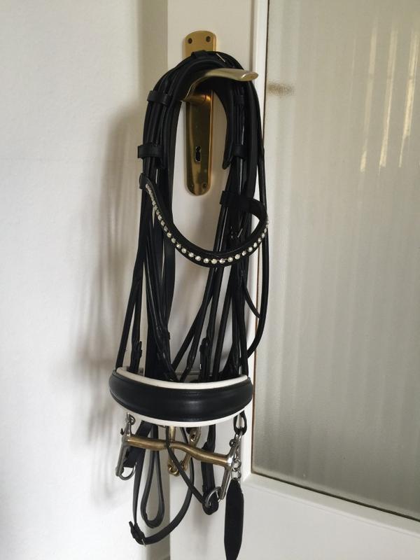 os kandare in mommenheim pferde kaufen und verkaufen. Black Bedroom Furniture Sets. Home Design Ideas