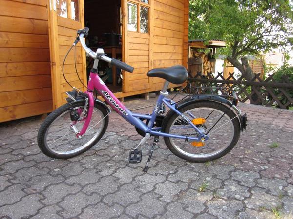 pegasus fahrrad 16 zoll in ruppertsberg kinder fahrr der. Black Bedroom Furniture Sets. Home Design Ideas