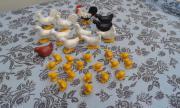 Playmobil Hühner, Hähne und Küken Hühner und Hähne von Playmobil für je 0,50 EUR pro Tier Küken von Playmobil für 0,20 EUR pro ... 0,50 D-35392Gießen Heute, 11:38 Uhr, Gießen - Playmobil Hühner, Hähne und Küken Hühner und Hähne von Playmobil für je 0,50 EUR pro Tier Küken von Playmobil für 0,20 EUR pro